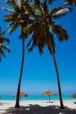 Two palms on oceanic whitesand beach Stock Images