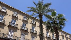 Two palms in the plaza. View inside the Plaza Nueva or Plaza Barria in Bilbao Spain stock video