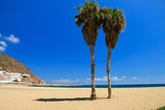 Two palmtrees in The beach of San Jose , Spain Stock Photos