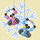 Two Pandas in a fur headphones Stock Images