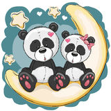 Two Pandas on the moon. Two Cute Pandas is sitting on the moon Royalty Free Stock Photos