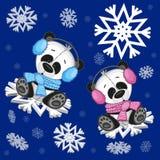 Two Pandas Stock Photos