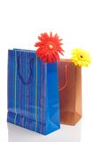 Two Paper Bags For Gifts Royalty Free Stock Photography