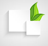 Two paper squares with leaves vector illustration