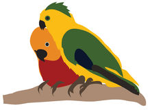 Two Parakeets Royalty Free Stock Image