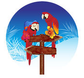 Two parrots on the signs Illustrations Royalty Free Stock Photos