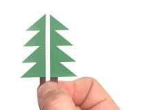 Two Parts Of Christmas Tree Stock Photos