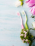 Two pastel toothbrushes with flowers herbs. Spring colors Royalty Free Stock Image