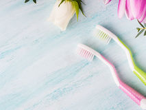 Two pastel toothbrushes with flowers herbs. Spring colors Stock Images