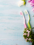 Two pastel toothbrushes with flowers herbs. Spring colors Royalty Free Stock Images