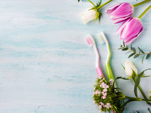 Two pastel toothbrushes with flowers herbs. Spring colors Royalty Free Stock Photography