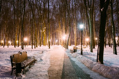 Two Path, Way in Snowy city park in light of lanterns at evening Stock Photography