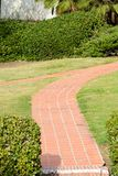 Two paths into one. Two red stone paths converges into one amid the grass and plants in Presidio park Royalty Free Stock Photos