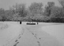 Two Paths. Snowy day in the park with two paths to choose from...  Black & white Royalty Free Stock Photo