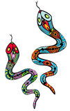 Two patterned snakes Stock Photos