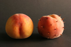 Two peaches. Two peaches on a black background. One peach  is with thorns, another without Royalty Free Stock Images