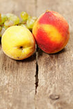 Two peaches Stock Photography