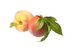 Two peaches Royalty Free Stock Photo