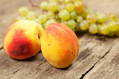 Two peaches and bunch of grapes Stock Image