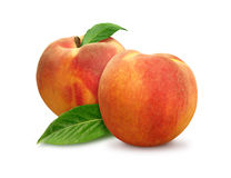 Two Peaches isolated Stock Images