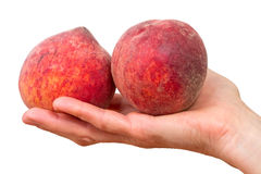 Two peaches on a palm Stock Photos