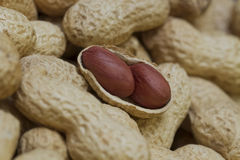 Two Peanuts in open shell Royalty Free Stock Photos
