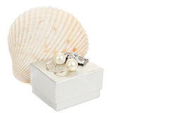 Two pearl earrings, shells and gift box isolated on white Royalty Free Stock Photos
