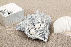 Two pearl earrings and shells on sand Stock Photos