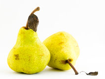 Free Two Pears Royalty Free Stock Photography - 5459377
