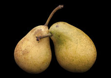 Two pears isolated on black Stock Photography