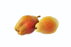 Two pears. Isolated. Two pears. Red and yellow Stock Photography