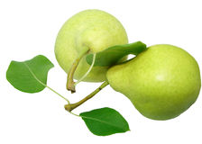 Two pears with leaves. Two yellow green ripe pears with leaves Royalty Free Stock Photography