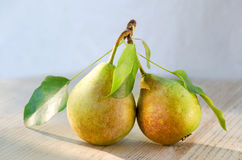 Two pears on one stalk with leaves. With drops of water, lit by the sun on wooden background. Paired fruits. Two pears on one stalk with leaves. With drops of Stock Photography