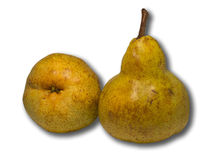 Two pears. Two yellow pears on a white background Royalty Free Stock Image