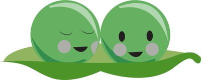 Two Peas Royalty Free Stock Photography
