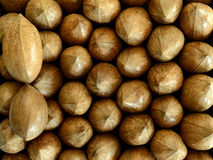 Two pecan nuts over pecan nuts Royalty Free Stock Photo