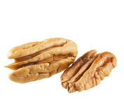 Two Pecans Isolated Stock Photography