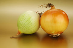Two peeled onions Royalty Free Stock Image