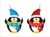 Two Penguin Santa Claus. Two Funny Penguin in red Santa hat and scarf Royalty Free Stock Photos