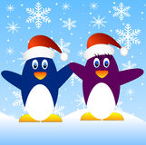 Two penguins on a blue background with snowflakes Stock Photo