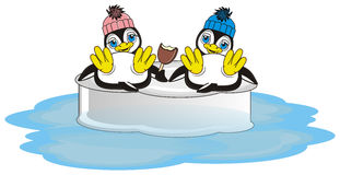 Two penguins on the ice Royalty Free Stock Image