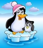 Two penguins on iceberg. Color illustration Stock Photo