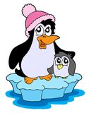 Two penguins on iceberg vector illustration. Two penguins on iceberg - vector illustration Royalty Free Stock Photography