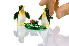 Two penguins ladybug and a master's hand ceremony Stock Photography
