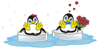 Two penguins in love Stock Photos