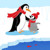 Two penguins Royalty Free Stock Images