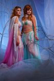 Two pensive elf women in magical forest. Elves in magical winter forest Royalty Free Stock Photo