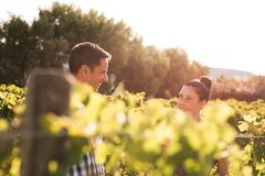 Two people on a day out in the vineyards Stock Image