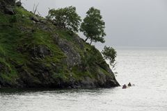 Two people kayaking around forested rocks royalty free stock images