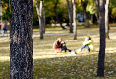 Two people in the park in autumn season with blur background Stock Image